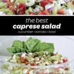 best caprese salad recipe pin