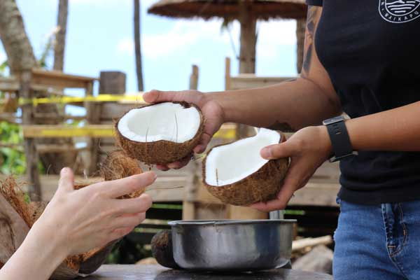 learn how to husk a coconut How to open a coconut step by step