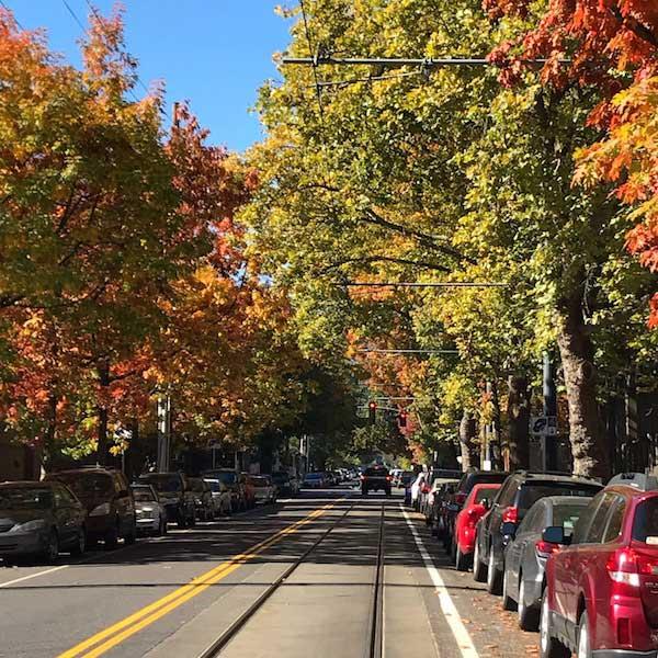 roadtrip in the fall in oregon to go pumpkin picking