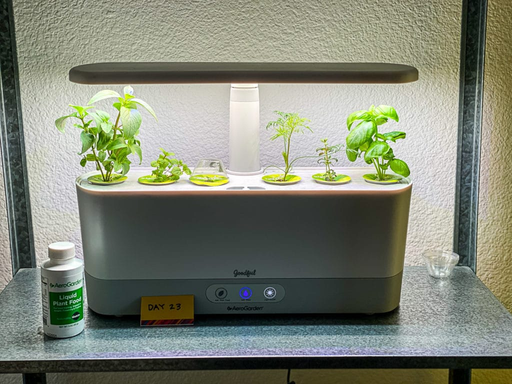 Aerogarden Herbs Touch the Light
