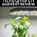 aerogarden harvest review graphic with text