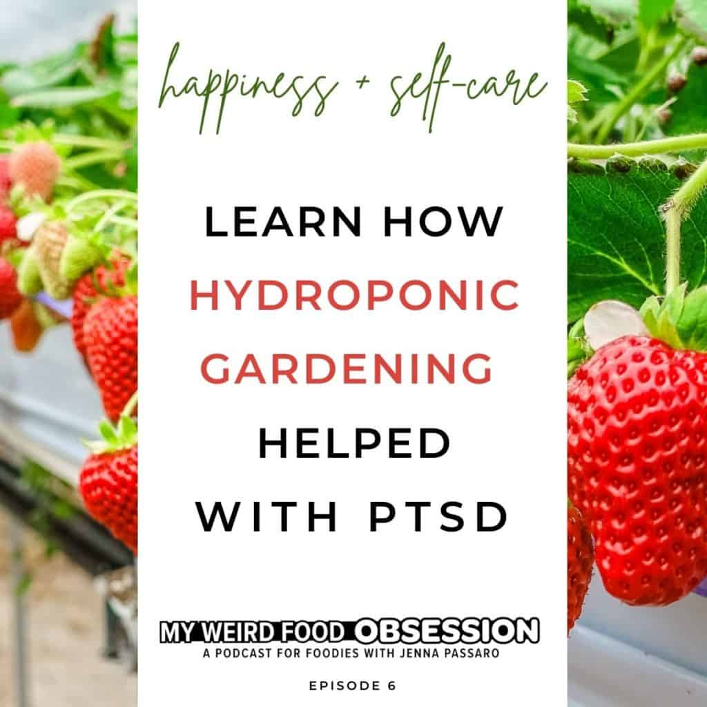 Text about learning how hydroponic Gardening As A Food Hobby Helped With PTSD for My Weird Food Obsession Podcast with photo of strawberries