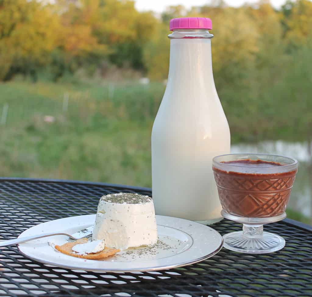 a table with a round of goat cheese on a plate with a spoon and cracker with a little of that cheese on the cracker. A jug of milk and chocolate dessert in a glass are behind the plate