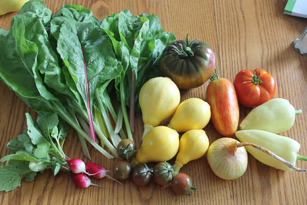 various vegetables posed on a table - raddishes, leafy greens, squash, tomatoes, peppers, onion