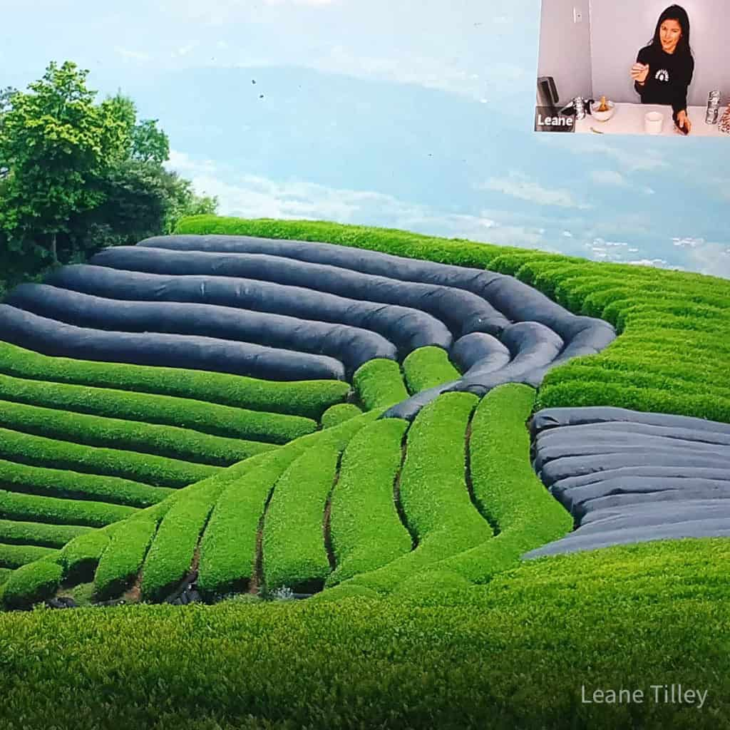 field with a picture in picture of Leane and her matcha making set up