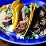 Sous vide pulled pork tacos.
