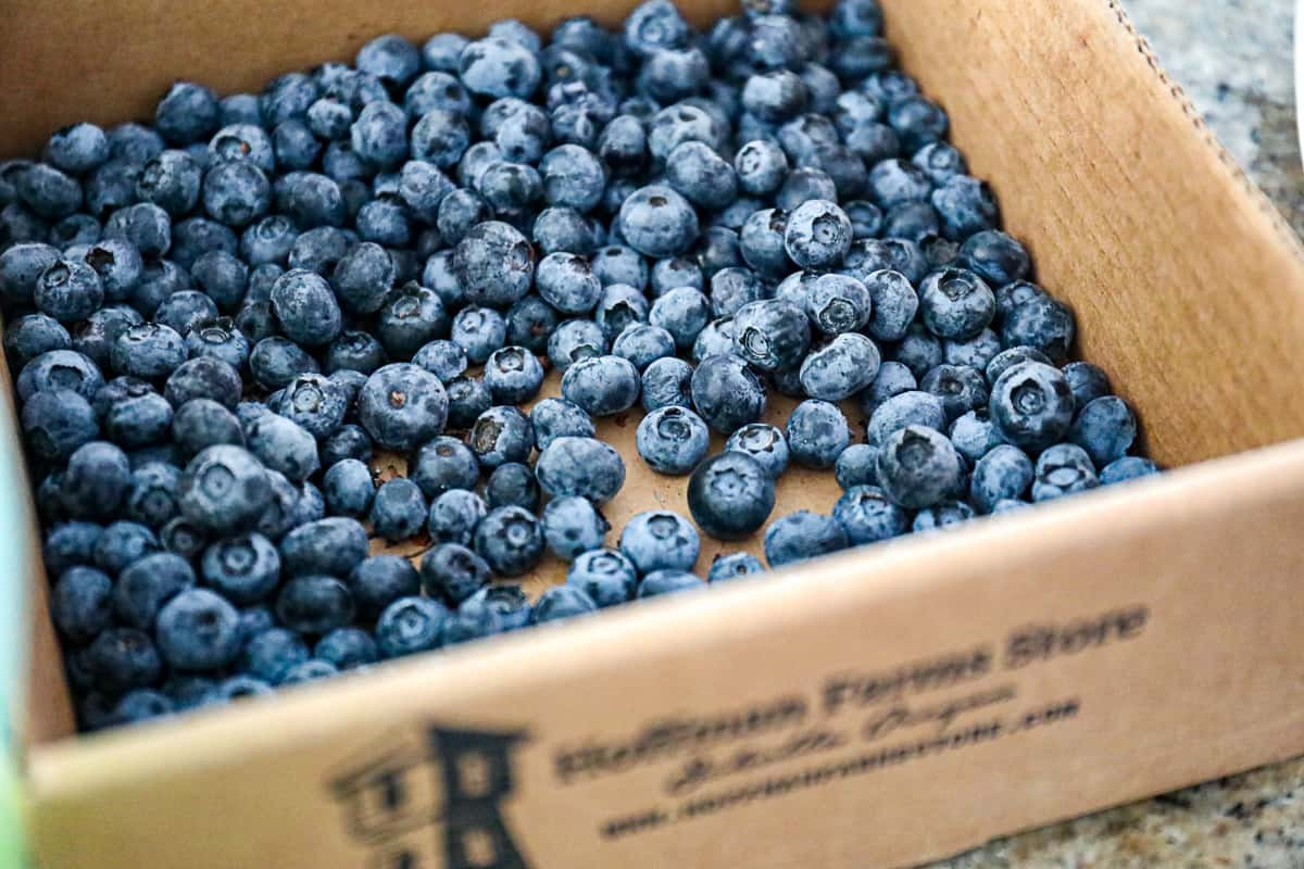 Carton of fresh Blueberries