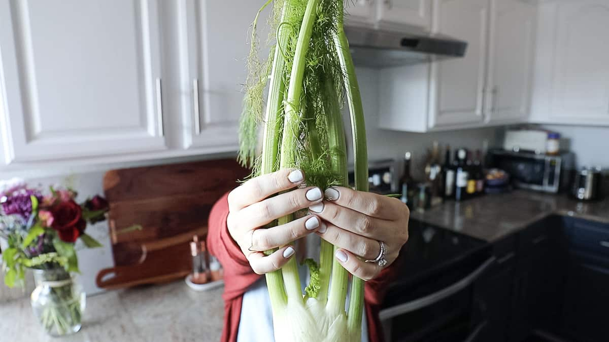 holding fall vegetable fennel